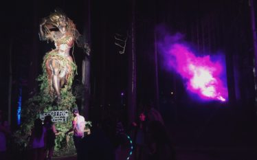 Sherwood Dreams: Falling Into The Rabbit Hole of Electric Forest